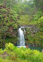 Road to Hana Study 13