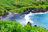 Road to Hana Study 16