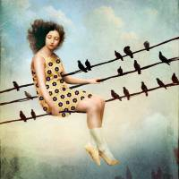 Hang in there Art Prints & Posters by Catrin Welz-Stein