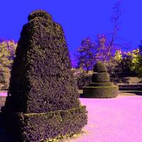 french_garden_vivid_3sq