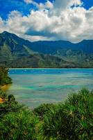 Vertical View Across Hanalei Bay