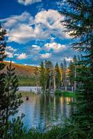 Lake Mary Vertical