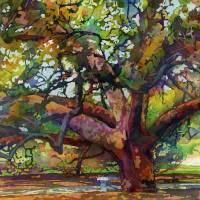 Sunlit Century Tree Art Prints & Posters by Hailey E. Herrera Watermedia