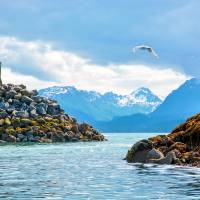 Entering Kachemak Bay Art Prints & Posters by Cheryl Marie