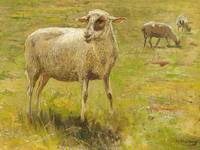 MÜHLIG, HUGO 1854 Dresden - 1929  Three Sheep