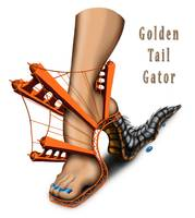 Golden Tail Gator