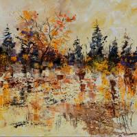 pond 777180 Art Prints & Posters by pol ledent