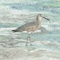 Solitary Shorebird Art Prints & Posters by I.M. Spadecaller