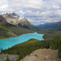 Peyto Lake by Roger Dullinger