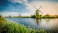 Dutch Windmills By The River