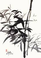 Bamboo Ink Painting In Sumi  Brush Strokes