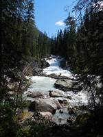 Where The Yoho River Meets Kicking Horse River