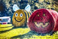 Happy Bumble Bee and Pumpkin Hay Bales