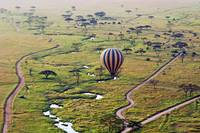 Balloon Safari_2012 06 01_3126