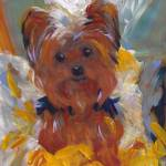Yorkshire Terrier Dog by RD Riccoboni