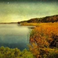 South Carolina Sunset Art Prints & Posters by RC deWinter