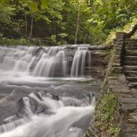 Woodland Falls in August Art Prints & Posters by Michael Stephen Wills