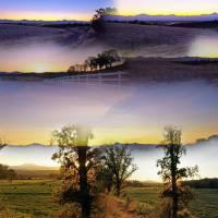 Redding Sunrise Collage by Richard Thomas