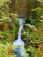 Photography Art Sol Duc Falls