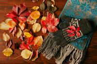 Gloves, scarf and autumnal foliage
