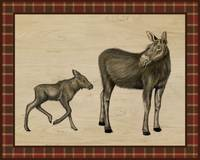 Rustic Woods Collection - Moose and Calf