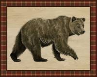 Rustic Woods Collection - Bear