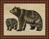 Rustic Woods Collection - Bear and Cub