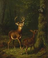 Arthur Fitzwilliam Tait 1819 - 1905 THE FOREST, AD