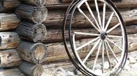 Old Wheel and Logs
