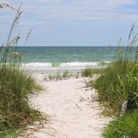 This Way to the Beach sq b by Carol Groenen