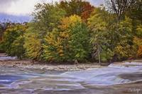 Artistic Autumn At Healey Falls