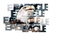eagle words