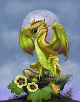 Gooseberry Dragon