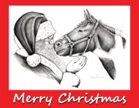 Merry Christmas Santa  and Horse