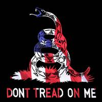 American Pride Don't Tread On Me SQUARE