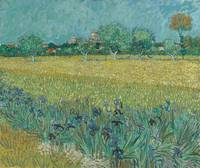 Field with Irises near Arles Arles, May 1888 Vince