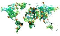 Butterfly Effect Green World Map Watercolor