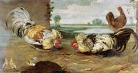 A Cock Fight by Frans Snyders