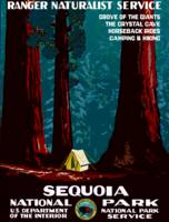 Vintage Sequoia National Park Camping
