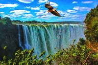 Africa Fish Eagle Over Victoria Falls