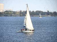 sailboat galveston bay