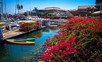 Summer Days at the Ventura Harbor