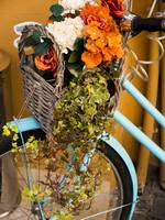 Basket Full of Flowers