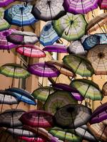 Colorful Canopy of Umbrellas