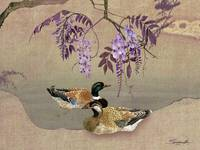 Ducks Under Wisteria Tree