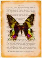 Butterfly on old book page