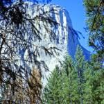 """Rockface, Yosemite"" by PriscillaTurner"