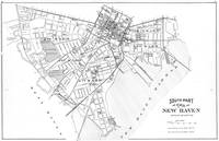 Vintage Map of New Haven Connecticut (1893) BW