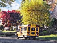 Parked School Bus In Autumn