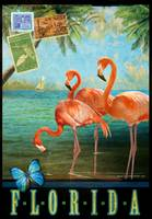 florida flamingoes